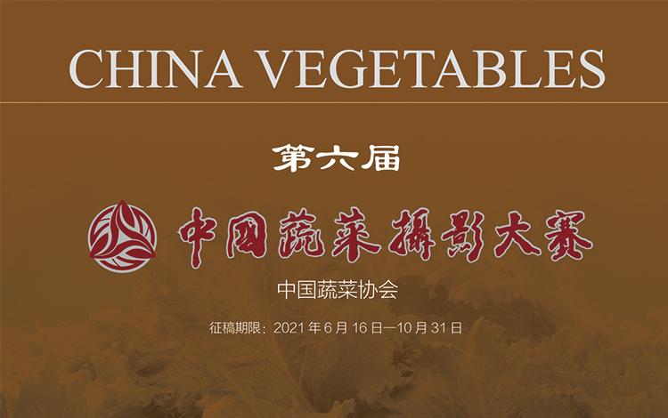 第六届中国蔬菜摄影大赛